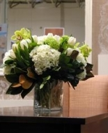 Overflowing White Hydrangea\'s in a Cube Glass Vase.