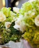 White and Green Hydrangea\'s