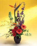 Birds of Paridise are beautiful in this Tropical Arrangement