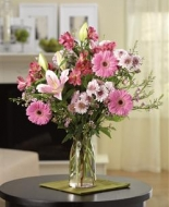 Pink Gerbers and lilies are wonderful in the vase